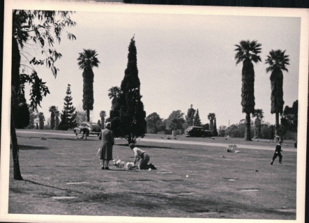 Forest Lawn 1948_0006